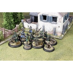 Federated States of America - Federal Infantry Set