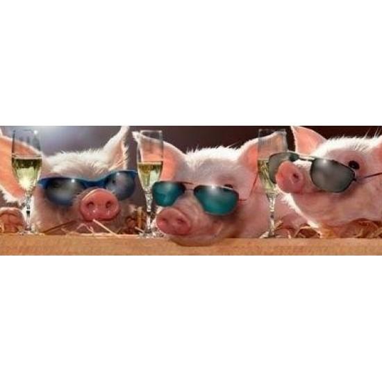 Funny Panorama - Pigs